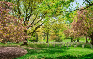 Gravesite surrounded by colorful trees at the Arlington National Cemetery