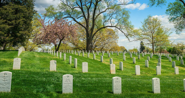 rows of gravestones at Arlington national cemetery