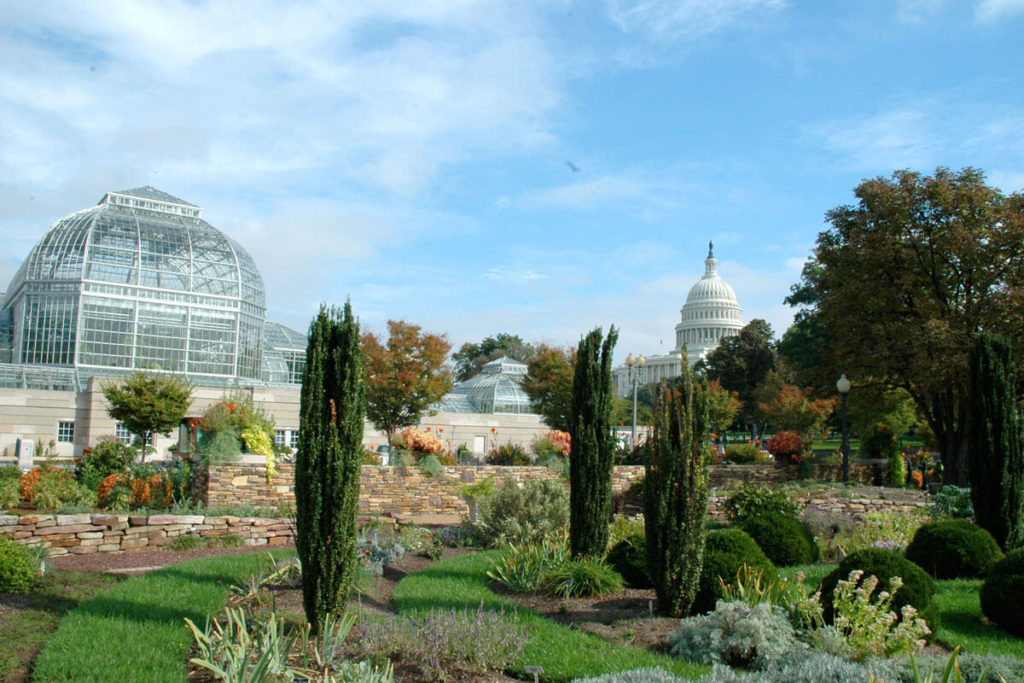 Washington DC Botanical Garden